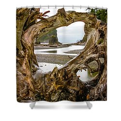 Ruby Beach Driftwood 2007 Shower Curtain