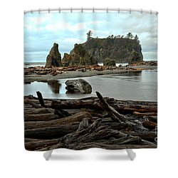 Ruby Beach Driftwood Shower Curtain