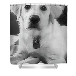 Ruby Shower Curtain by Bruce Carpenter