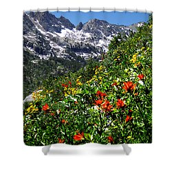 Ruby Mountain Wildflowers - Vertical Shower Curtain