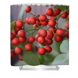 Ruby Red Berries Shower Curtain