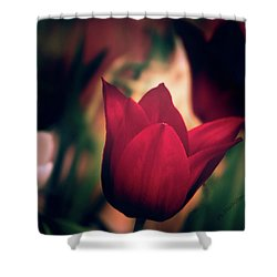 Ruby Red Tulip Shower Curtain
