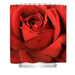 Ruby Rose Shower Curtain by Marna Edwards Flavell