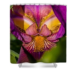 Ruby Royal Robe Shower Curtain