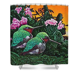 Ruby-throated Hummingbirds Shower Curtain
