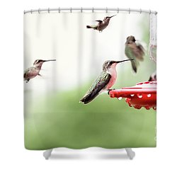 Shower Curtain featuring the photograph Ruby-throated Hummingbirds by Stephanie Frey