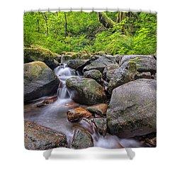 Ruckel Creek Shower Curtain by David Gn