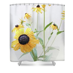 Shower Curtain featuring the photograph Rudbeckia 1 by Cindy Garber Iverson