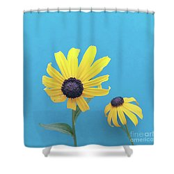 Shower Curtain featuring the photograph Rudbeckia 2 by Cindy Garber Iverson