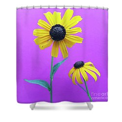 Shower Curtain featuring the photograph Rudbeckia 3 by Cindy Garber Iverson