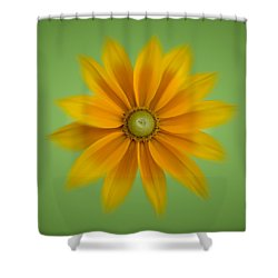 Rudbeckia Blossom Irish Eyes - Square Shower Curtain