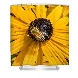 Rudbeckia With Bee Shower Curtain