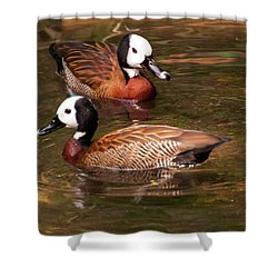 Shower Curtain featuring the digital art Ruddy Duck by Chris Flees