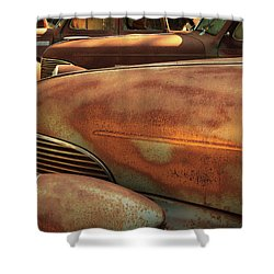 Ruddy Rover Shower Curtain