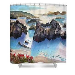 Marin Lovers Coastline Shower Curtain