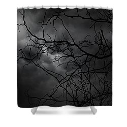 Ruler Of The Night Shower Curtain by Lourry Legarde