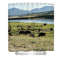 Rumble Shower Curtain