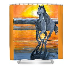 Run Free Shower Curtain by Donna Blossom