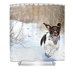 Run Millie Run Shower Curtain by Brook Burling