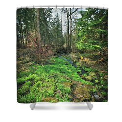 Running Creek In Woods - Spring At Retzer Nature Center Shower Curtain by Jennifer Rondinelli Reilly - Fine Art Photography