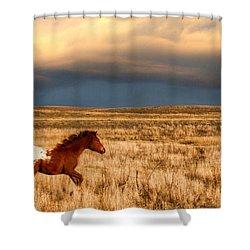 Running Free Shower Curtain