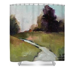 Running Stream Shower Curtain