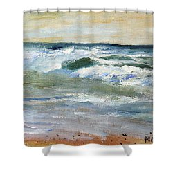 Shower Curtain featuring the painting Running The Beach by Michael Helfen