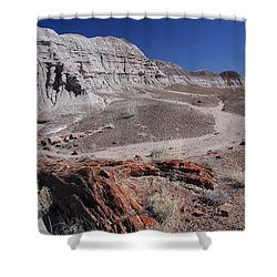 Runoff Obstacle Shower Curtain