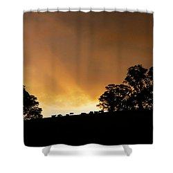 Rural Glory Shower Curtain by Mike  Dawson