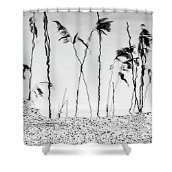 Rush Shadows Shower Curtain