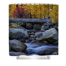 Rushing Into Autumn Shower Curtain by Mitch Shindelbower