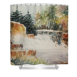 Rushing Streambed Shower Curtain
