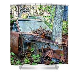 Rust Away Shower Curtain by Menachem Ganon