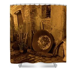 Rustic Buildings Shower Curtain