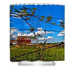 Rustic Frame Paint Shower Curtain by Steve Harrington