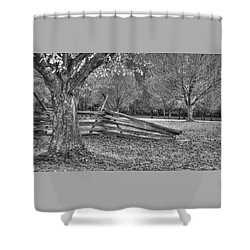 Rustic Shower Curtain by Michael Mazaika