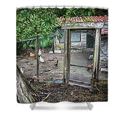 Shower Curtain featuring the photograph Rustic Old House In Galicia by Eduardo Jose Accorinti