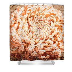 Rustic Peach Mum Shower Curtain