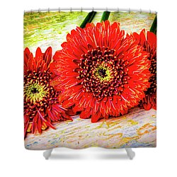 Rustic Red Dasies Shower Curtain by Garry Gay
