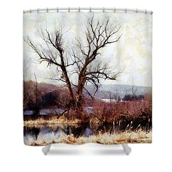 Rustic Reflections Shower Curtain by Janine Riley