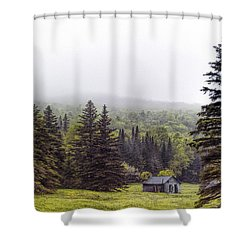 Rustic Remnant Shower Curtain by Richard Bean