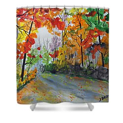 Rustic Road Shower Curtain by Jack G  Brauer