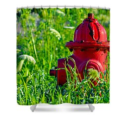 Rustic Roadside Shower Curtain