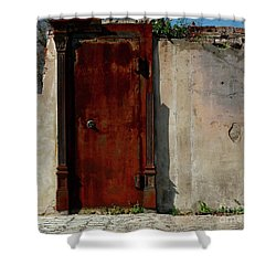 Rustic Ruin Shower Curtain