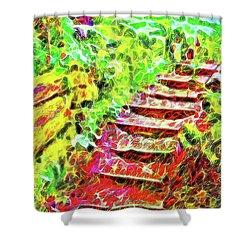 Shower Curtain featuring the digital art Rustic Step Path Through The Woods - Tamalpais California by Joel Bruce Wallach