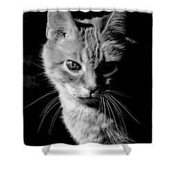 Rustie, Blind, Deaf Extroadinaire Black And White Shower Curtain