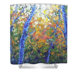 Rustlers Gulch Afternoon Shower Curtain