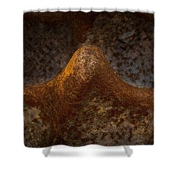 Shower Curtain featuring the photograph Rustwave by WB Johnston