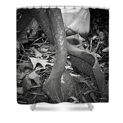 Shower Curtain featuring the photograph Rusty Embrace by Betty Northcutt