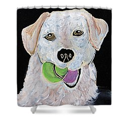 Shower Curtain featuring the painting Rusty On Canvas by Janice Rae Pariza